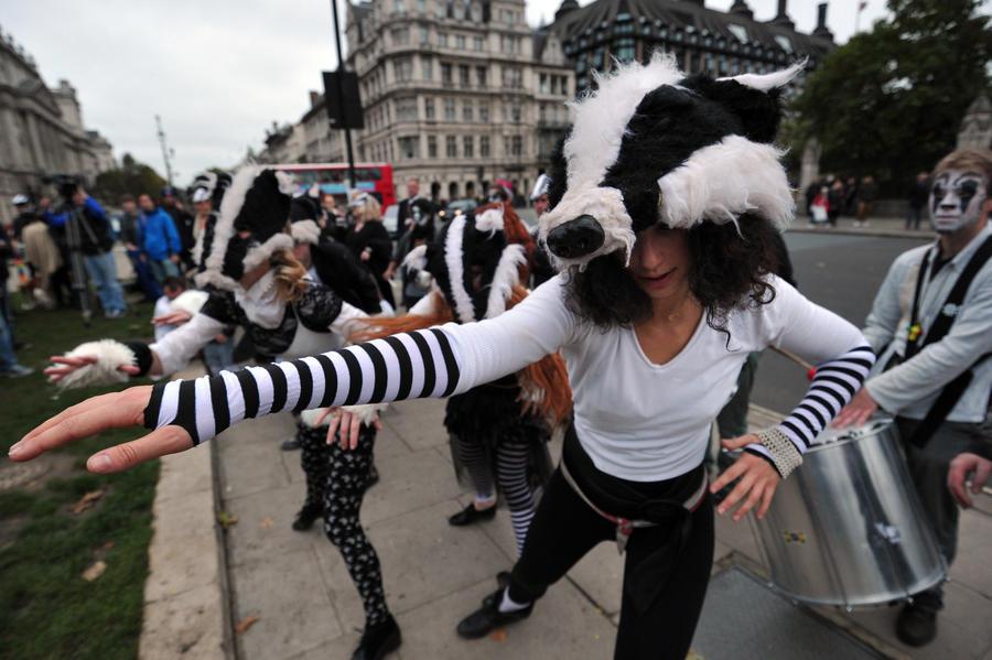 Британская полиция шантажирует борцов за права животных