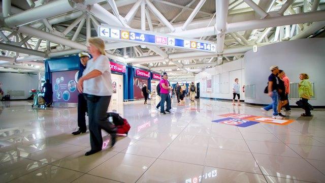 Италия готовится к туристическому сезону: сайты римских аэропортов теперь доступны на русском и китайском языках