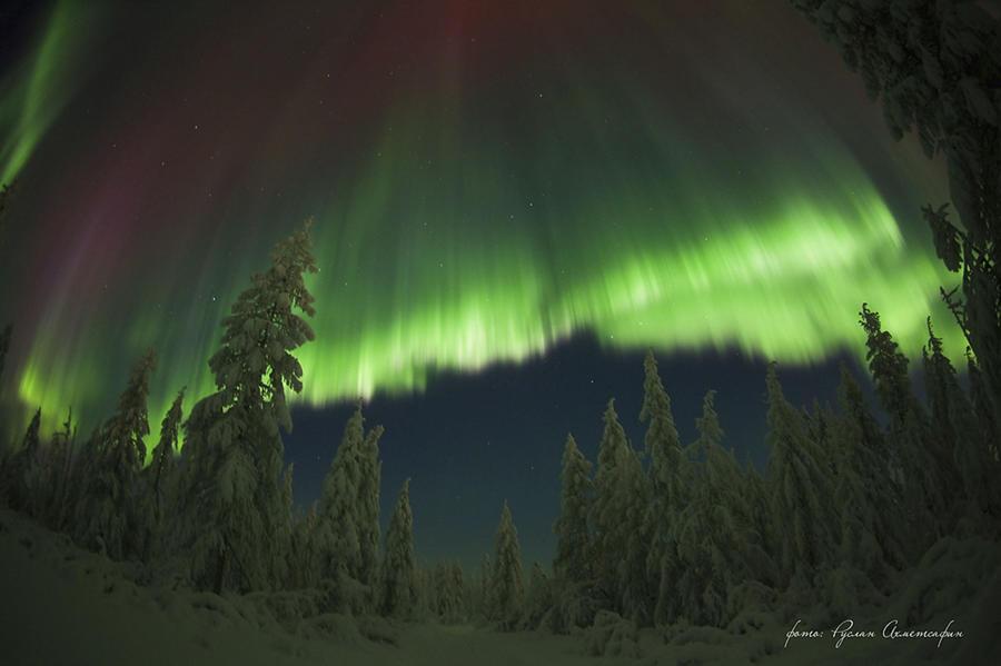 Северное сияние: фотографу удалось запечатлеть уникальные кадры