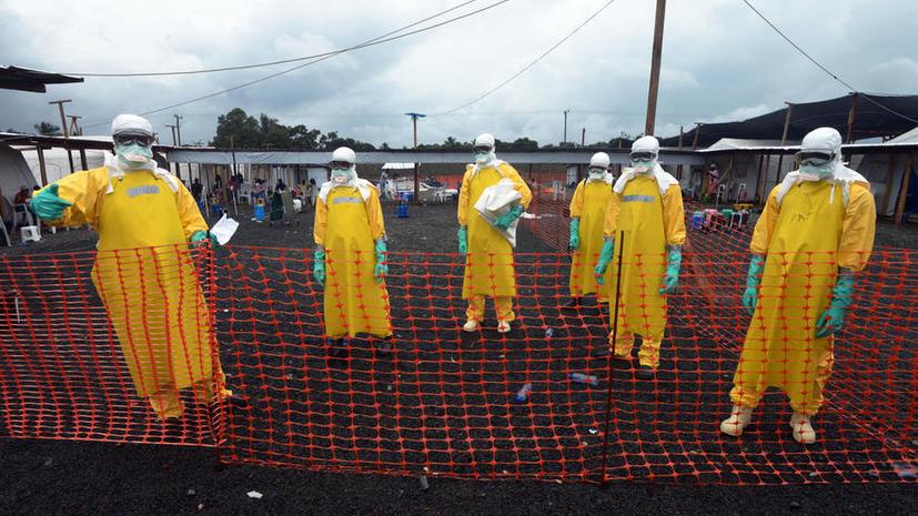 Вирусолог: Россиянам не стоит паниковать по поводу вируса Эбола