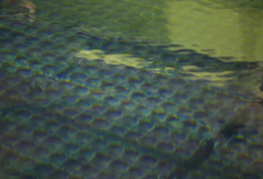На Фукусиме обнаружена утечка радиоактивной воды