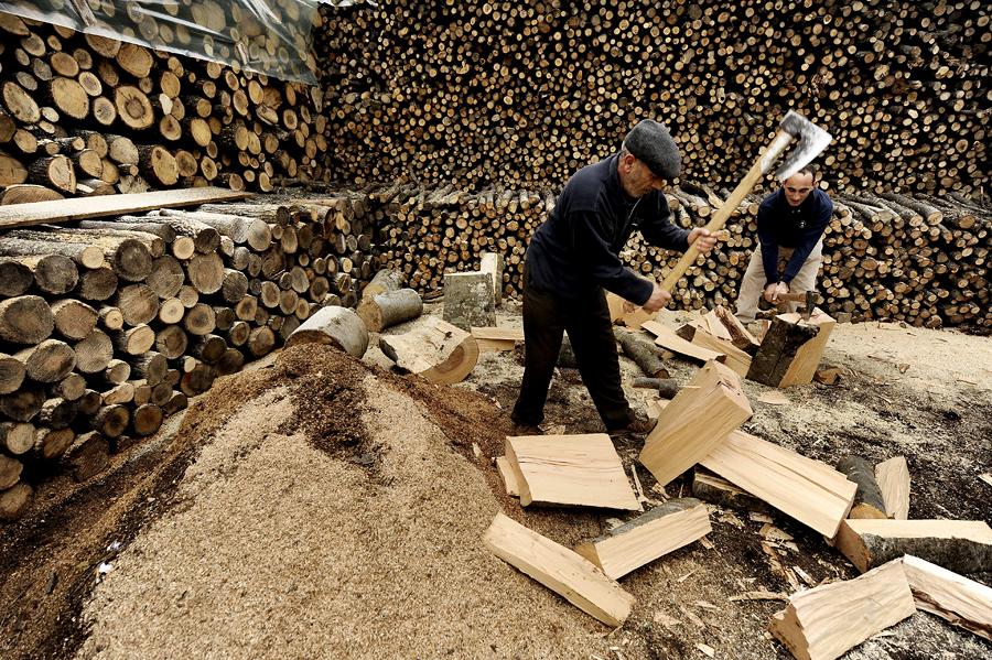 Экономический кризис вынудил греков отапливать свои дома дровами