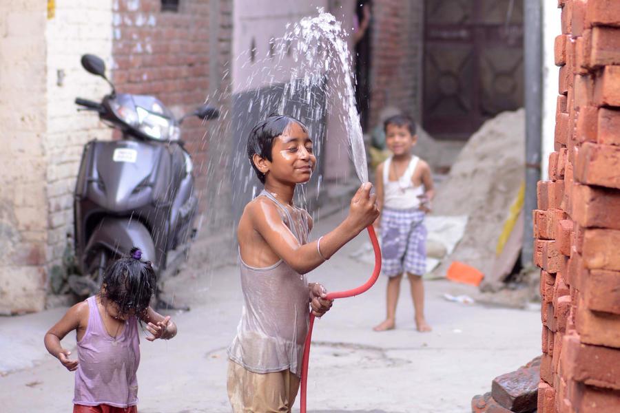 Аномальная жара в Индии убила больше 500 человек