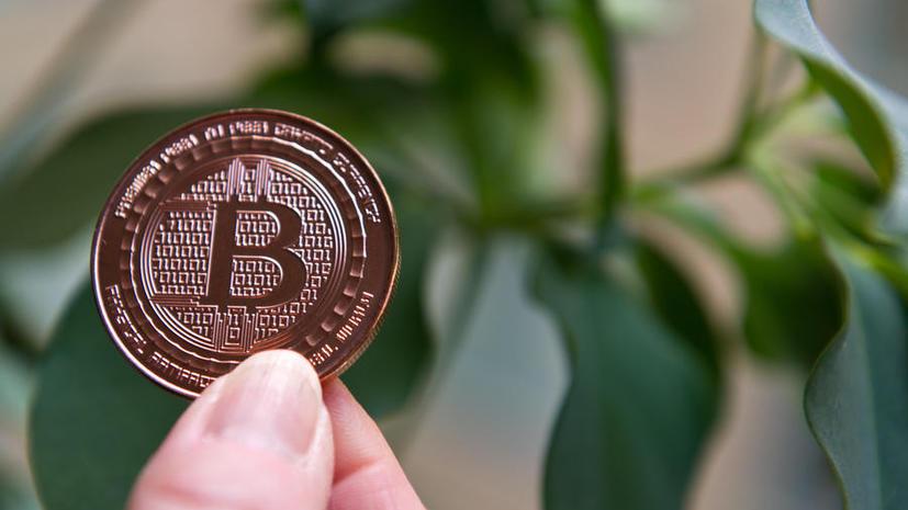 Минобороны США рассматривает биткоин как возможную террористическую угрозу