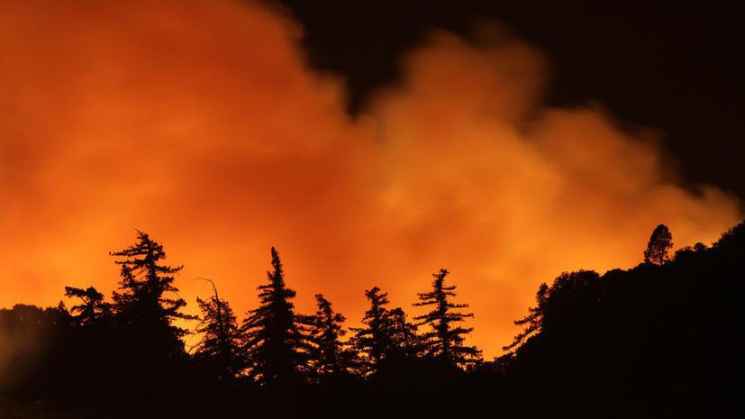 Жители более 1,5 тыс. домов эвакуированы из-за пожаров в США