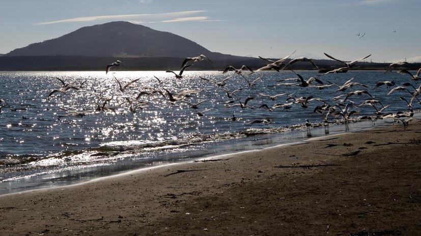 ООН признала Охотское море частью российского шельфа