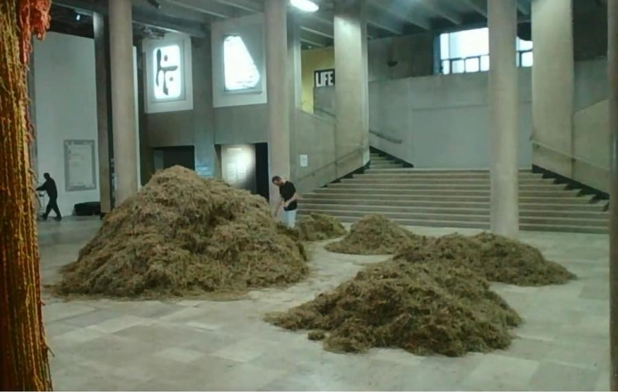 Художник в парижском музее 30 часов искал иголку в стоге сена