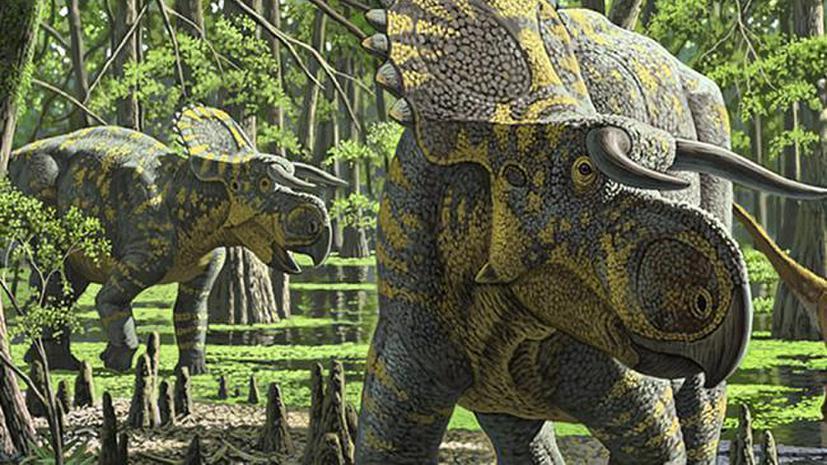Палеонтологи обнаружили в США неизвестный ранее вид динозавров