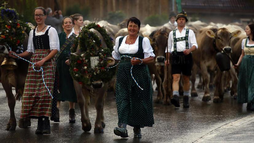 СМИ: Из-за санкций Кремля немецкие фермеры теряют по миллиарду в год