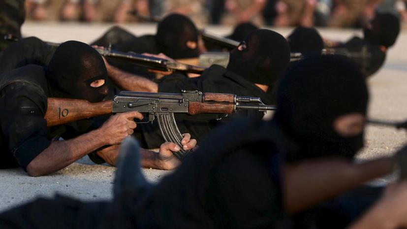 Американские сенаторы просят ЦРУ и Пентагон прекратить обучение боевиков оппозиции в Сирии