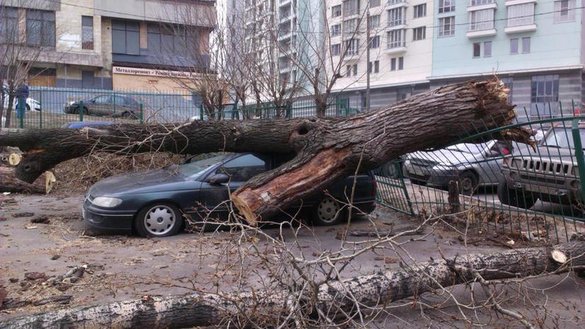 Штормовой ветер в европейской части России валит деревья, срывает крыши и сдувает самолёты