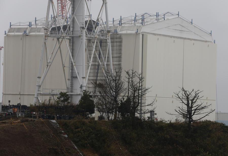 В рисе из префектуры Фукусима впервые не обнаружено следов радиационного заражения