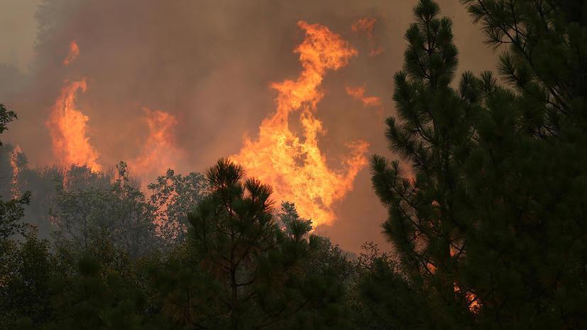 В Сан-Франциско объявлено чрезвычайное положение из-за пожара
