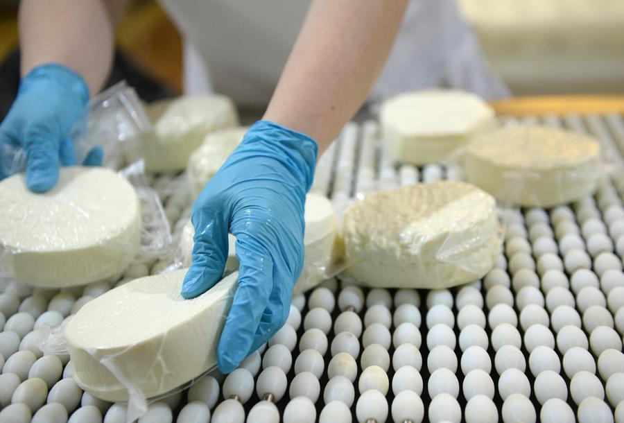 Роспотребнадзор намерен перекрыть поставки запрещённых сыров под видом диетпитания