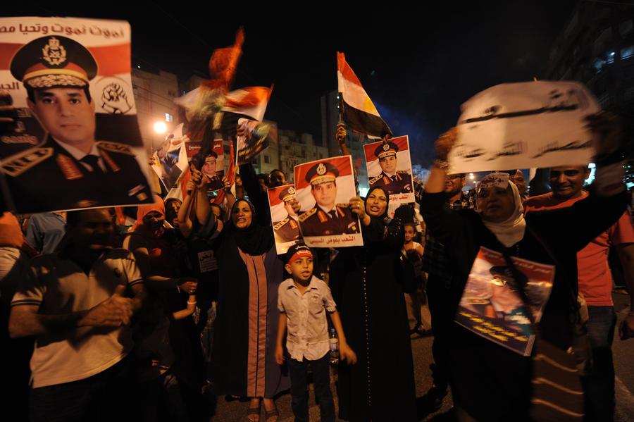 Египетский генерал: столкновения в Каире были вызваны агрессивными действиями «Братьев-мусульман»