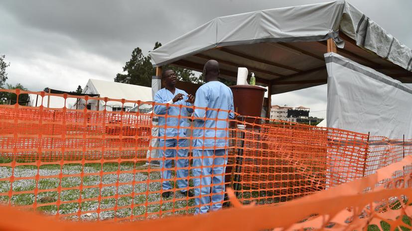 Учёные из Гарварда создали приборы для быстрой диагностики и лечения лихорадки Эбола