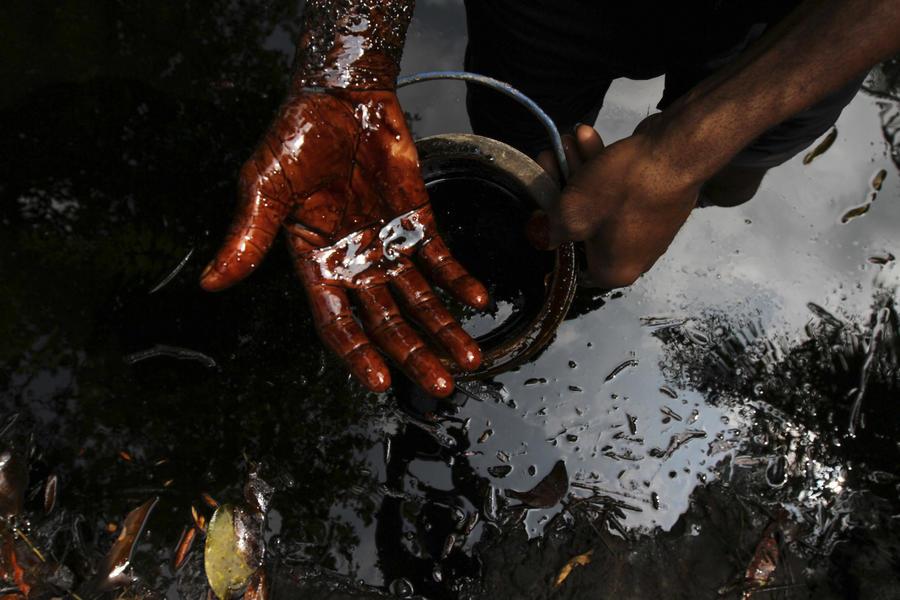 Чёрное золото, грязное золото: Shell могут обязать заплатить за экологическую катастрофу в Нигерии