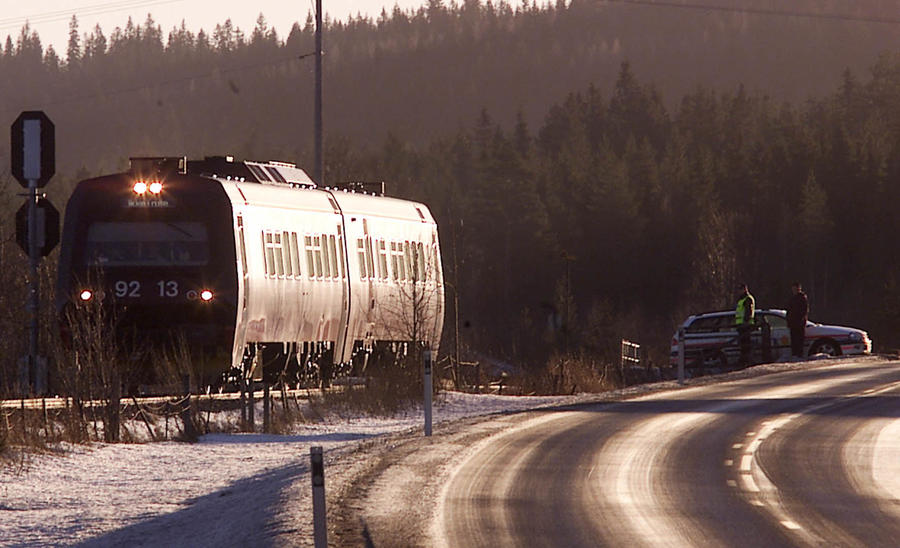 В Норвегии могут вооружить машинистов, чтобы те «добивали» сбитых поездами животных
