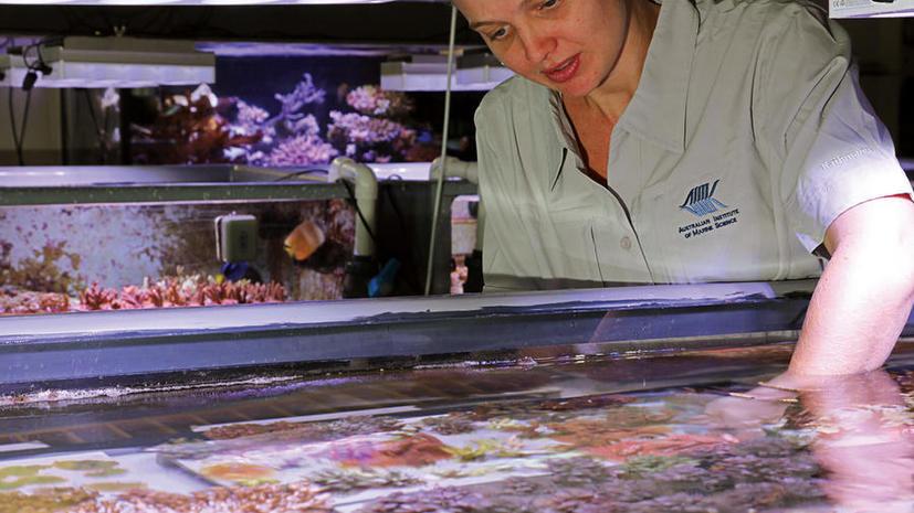 В Австралии открылся самый умный аквариум в мире