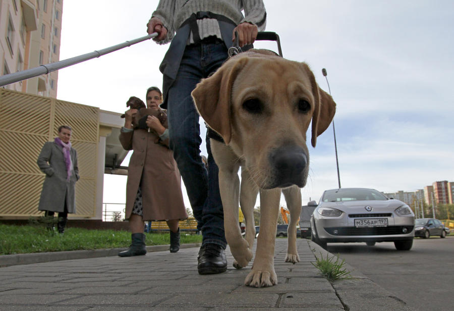 СМИ: Рестораны Москвы оборудуют для слепых и слабовидящих посетителей