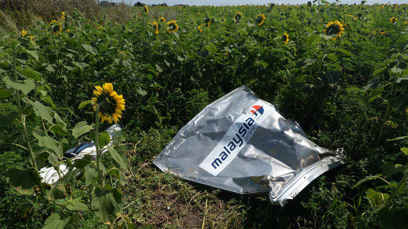 СМИ: Европа просила Украину  закрыть небо за несколько дней до крушения малайзийского Boeing 777