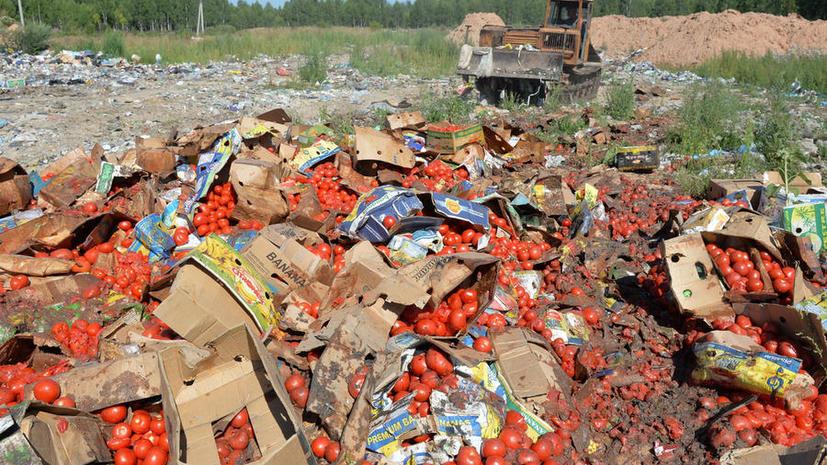 Более 300 тонн санкционных продуктов уничтожено за первый день действия указа
