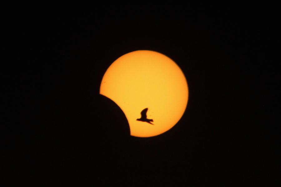 Солнечное затмение станет серьёзной опасностью для энергосистемы Европы