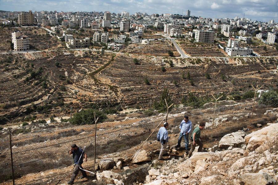 Израиль начнёт строительство ещё одной «разделительной стены»