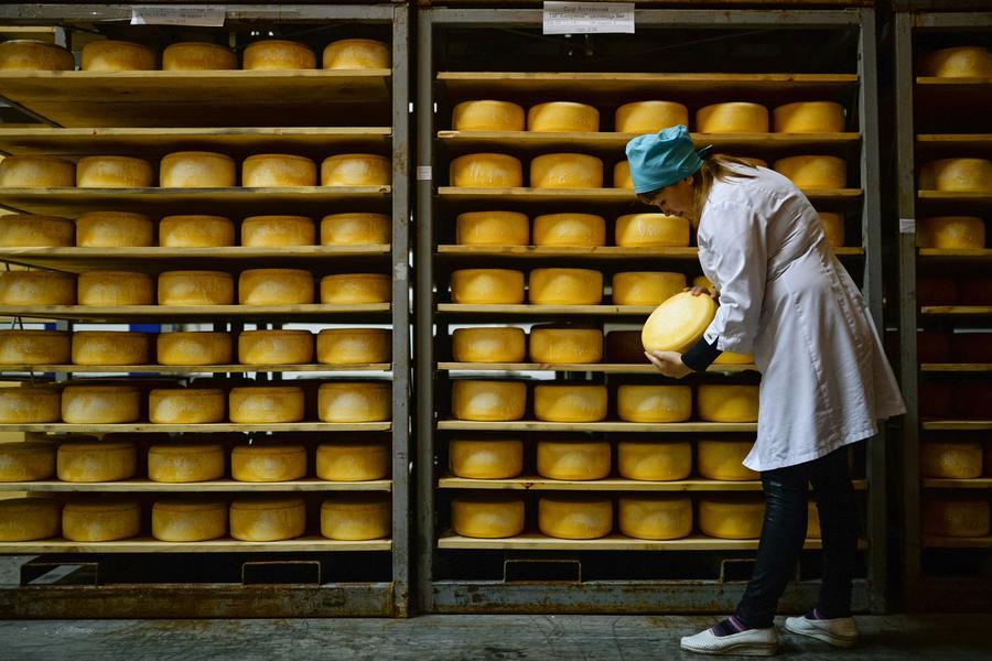 В России подготовили документ о продлении эмбарго на продукты из ЕС