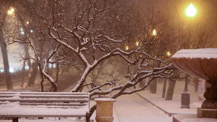 В столичных парках к зиме появятся скамейки с подогревом