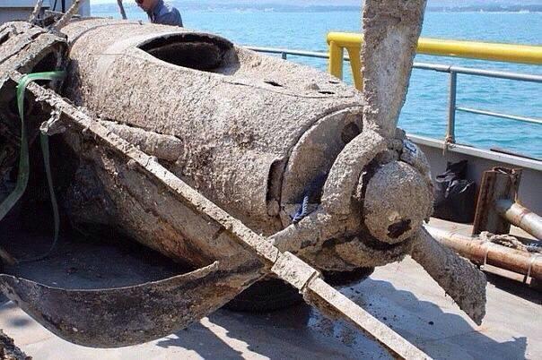 Активисты ищут родственников членов экипажа штурмовика времён ВОВ, найденного в Керченском проливе