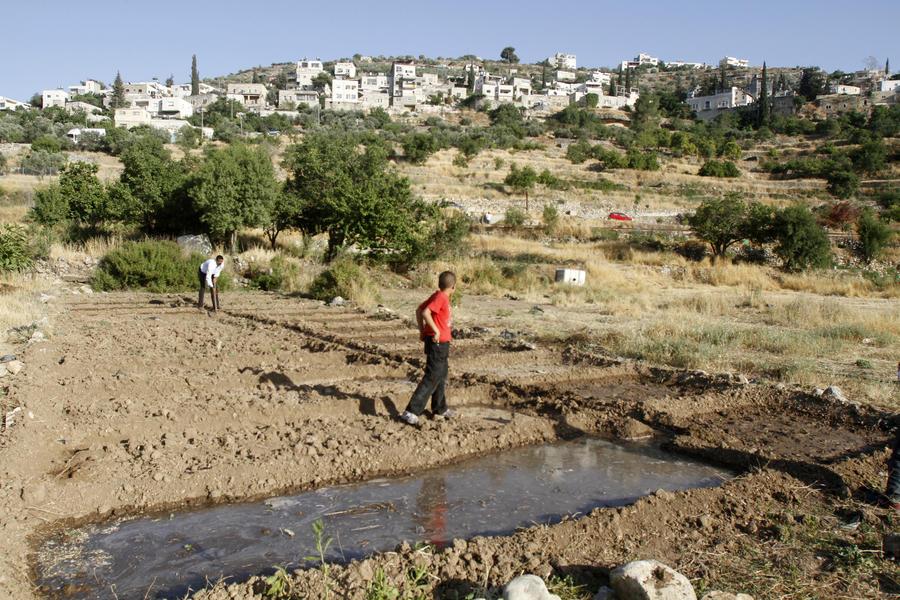 Израиль не одобрил решение Google «признать» Палестину