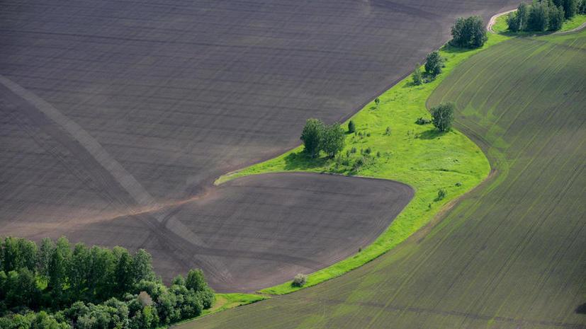 За нецелевое использование сельхозземель ждёт штраф в 500 тыс. рублей