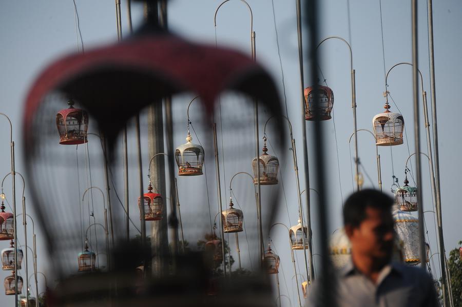 Въезд в Таиланд может стать платным