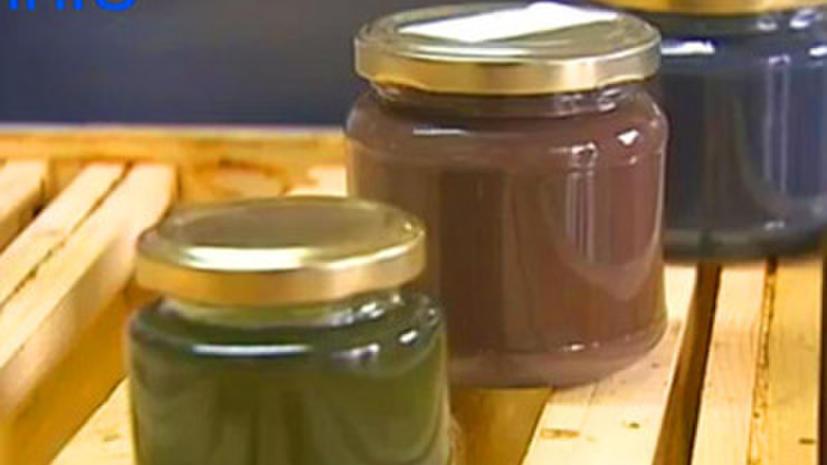 «Неправильные» пчелы: почему французский мед стал зеленым?
