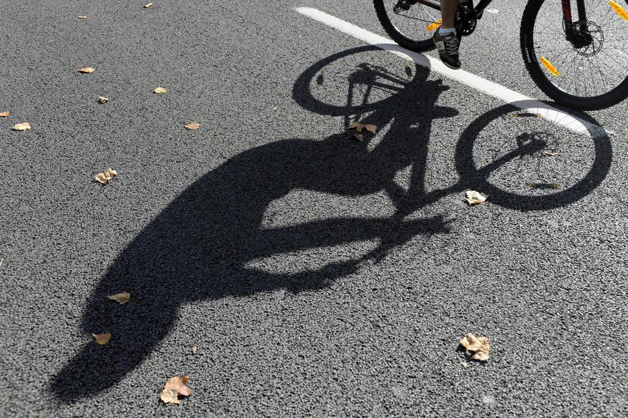 Депутаты предлагают наказывать за кражу велосипедов как за угон автомобиля