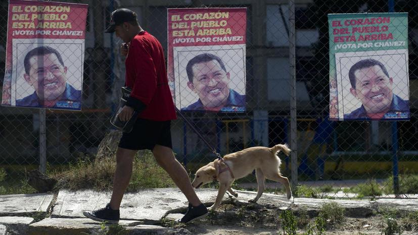 Венесуэла встаёт на защиту животных