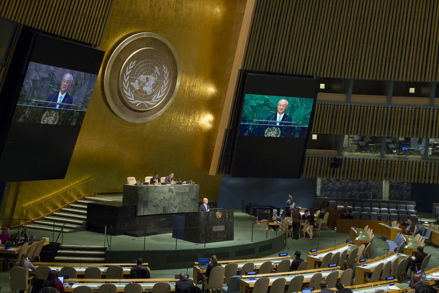 Украина, США и Канада отвергли в ООН резолюцию о борьбе с нацизмом