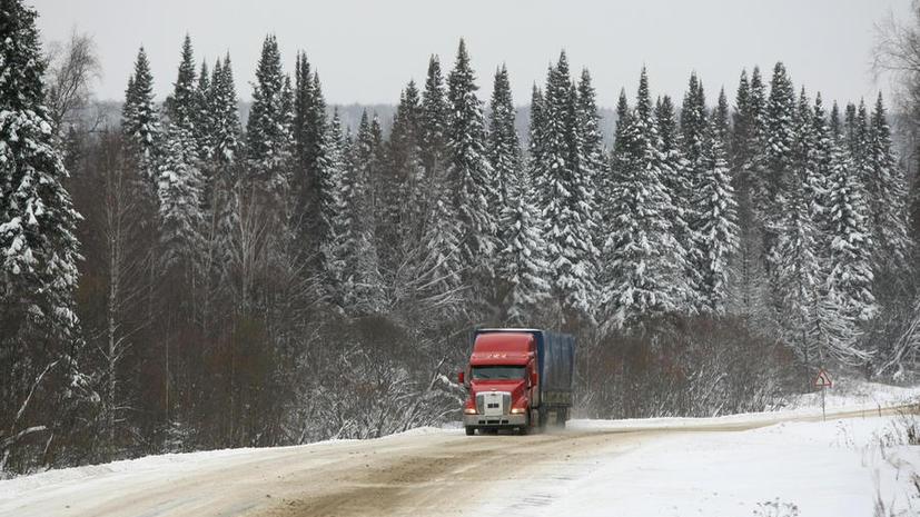Сибиряк без ног автостопом отправился к Владимиру Путину, чтобы рассказать о проблемах инвалидов