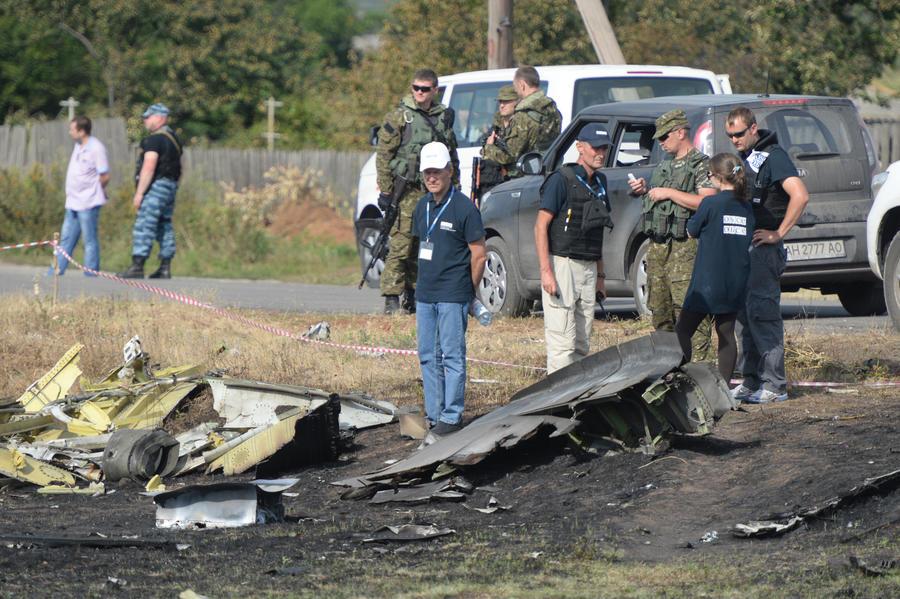 Американский политик: Власти США скрывают правду о крушении рейса MH17