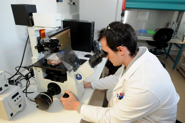 Человеческие хрящи для нужд медицины будут печатать на принтерах