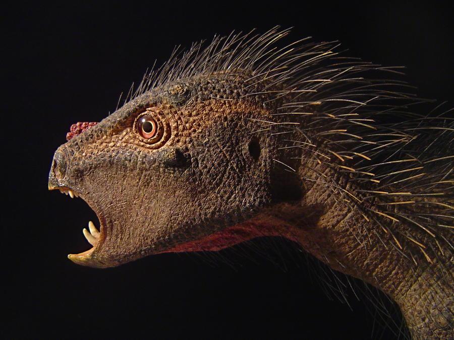 В Китае обнаружили первого динозавра с больными зубами