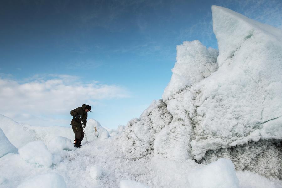 СМИ: В США обеспокоены отставанием от России в освоении Арктики