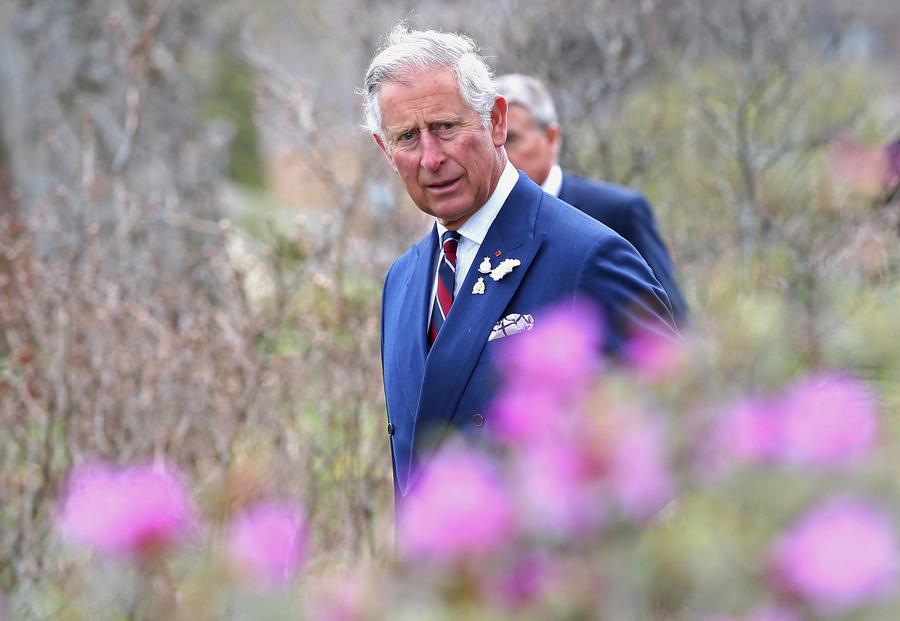 СМИ: Принц Чарльз сравнил Владимира Путина с Гитлером