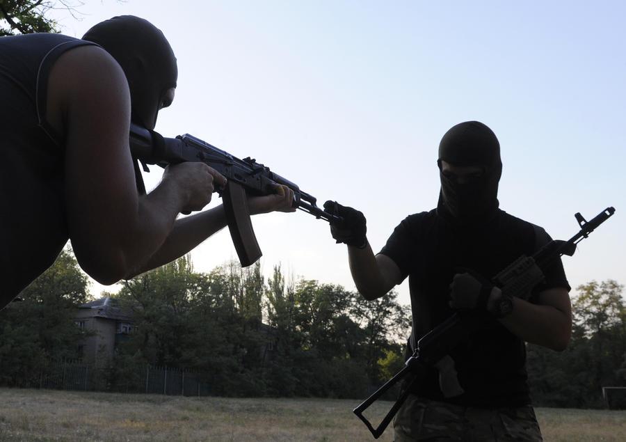 СМИ: Прежде чем вооружать Украину, её нужно научить воевать