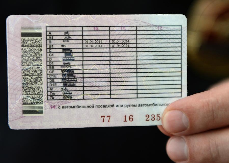 В РФ зарегистрированы новые программы обучения водителей и требования к автошколам