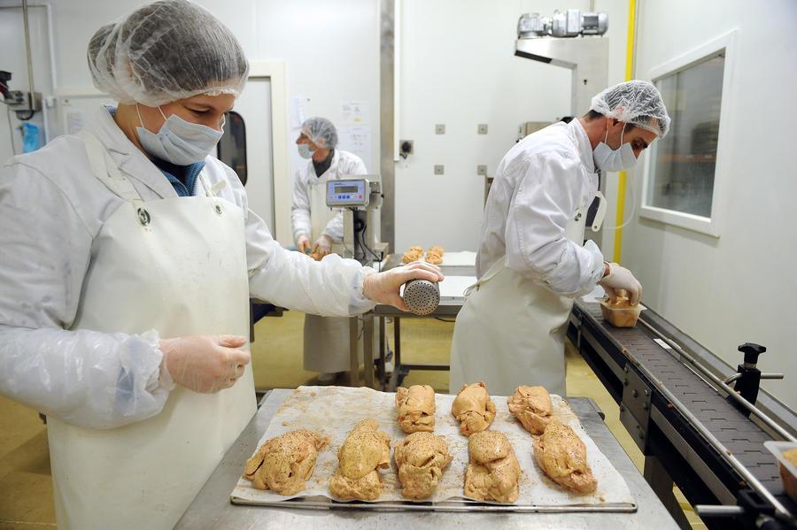 Индия ввела запрет на импорт фуа-гра из-за негуманного производства деликатеса