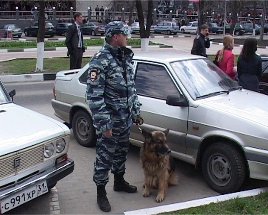 Полицейские Белгорода назначили вознаграждение в 3 млн рублей за информацию о Помазуне