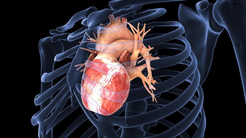 Заболевания сердца будут лечить с помощью виагры