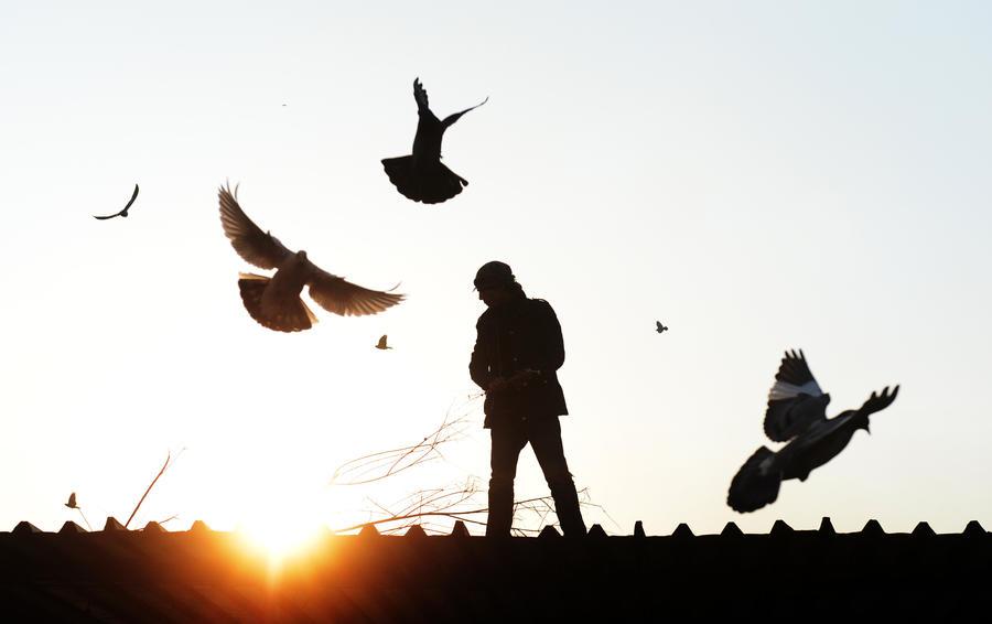 Великобритания предоставила политическое убежище атеисту из Афганистана